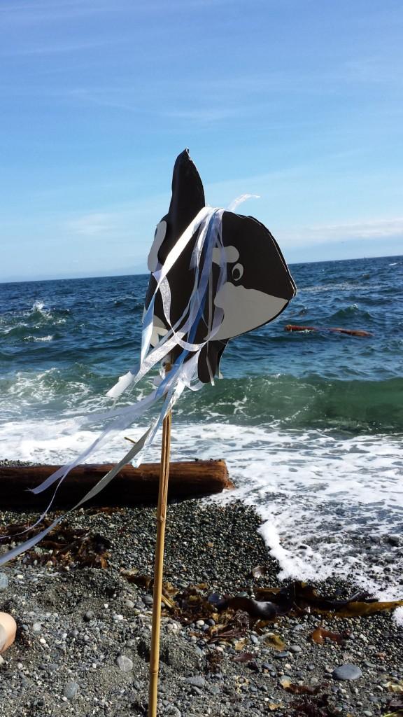 2014 August 8 Lolita seashore  sm