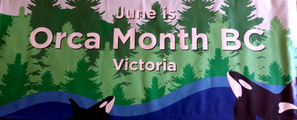 banner orca month